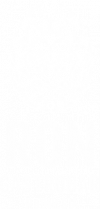 logo-ron-gastrobar-indonesia